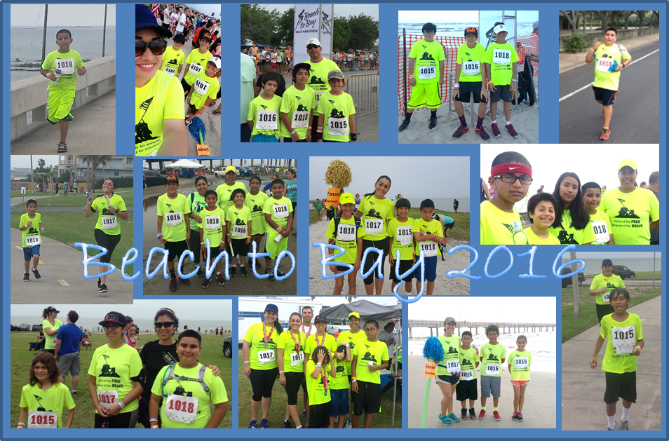 beach to bay 2016